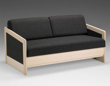 Contemporary Sleeper Sofa